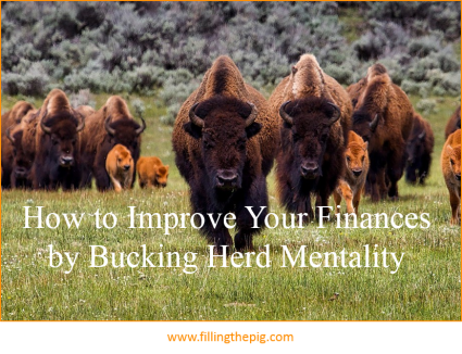 How to Improve Your Finances by Bucking Herd Mentality